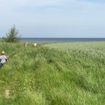 Ostsee-Urlaub mit der Familie